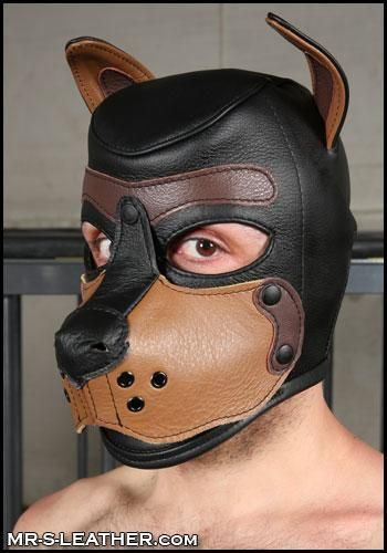 SHT236T_Leather_Puppy_Hood_blk_tan_1.jpg