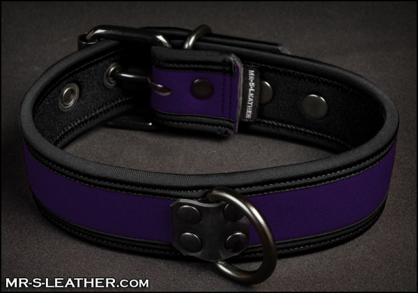 SNEO517p_collar_purple_1.jpg
