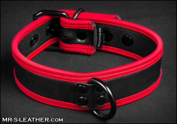SNEO516r_collar_red_2.jpg