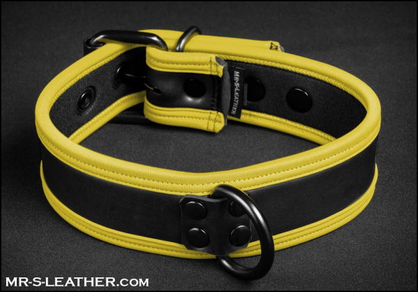 SNEO516y_collar_yellow_1.jpg