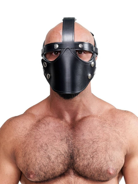 77642120_leather_face_muzzle_harness_1.jpg