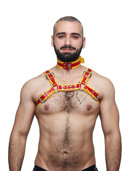 77604300_Mister_B_Leather_Circuit_Collar_Red_Yellow_1.jpg