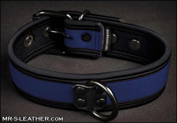 SNEO517b_collar_royal_1.jpg
