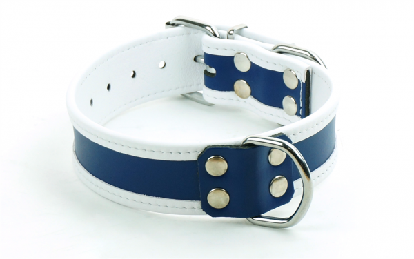 77604301_mister_b_leather_circuit_collar_blue_white_2.png