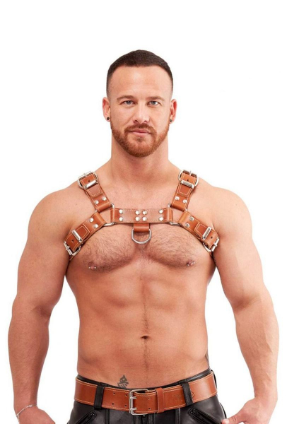 77601020_leather_chest_harness_saddle_leather_brown_1.jpg