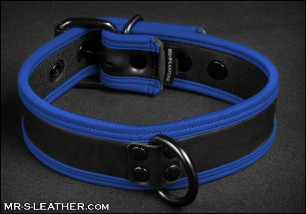 SNEO516b_Collar_blue_1.jpg